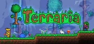 Terraria Cover Art